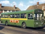 Pictures of AEC Merlin 4P2R (1964–1974)