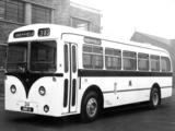 AEC Regal IV (1951–1962) pictures