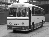 Photos of AEC Reliance Weymann C41С (1957)