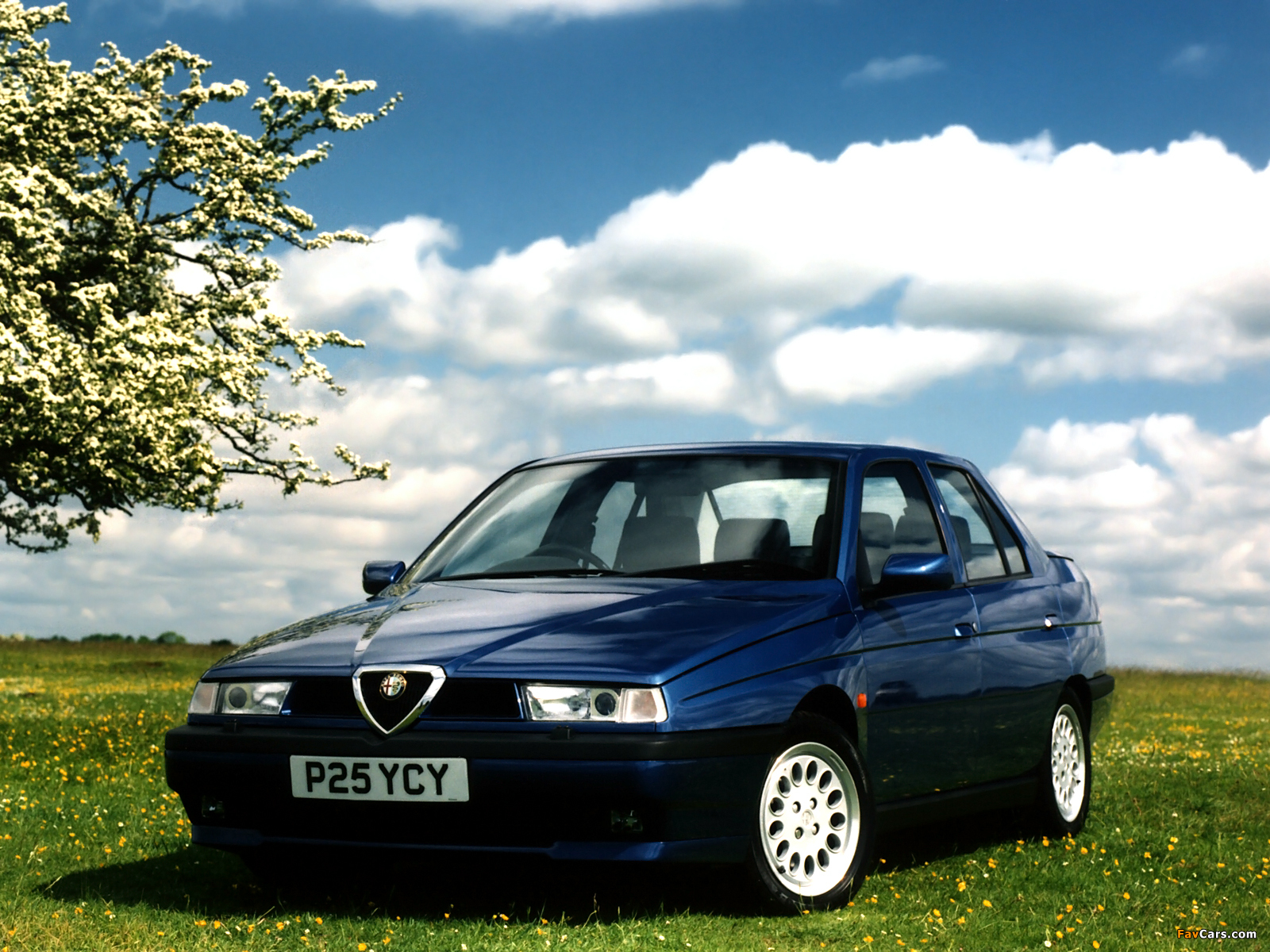 Wallpapers of Alfa Romeo 155 UK-spec 167 (1995–1997) (1600 x 1200)
