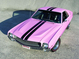 AMC AMX Playmate Pink 1969 images