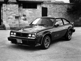 AMC AMX (43-9) 1979 photos