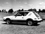 Wallpapers of AMC Gremlin X Levis 1978