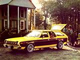 AMC Hornet Sportabout 1975–77 photos