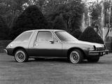 AMC Pacer D/L 1977 photos