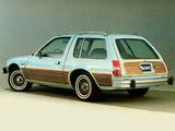AMC Pacer D/L Wagon 1980 photos