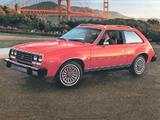 AMC Spirit D/L Sedan 1979–80 photos