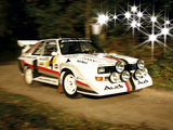 Photos of Audi Sport Quattro S1 Race of Champions 1988