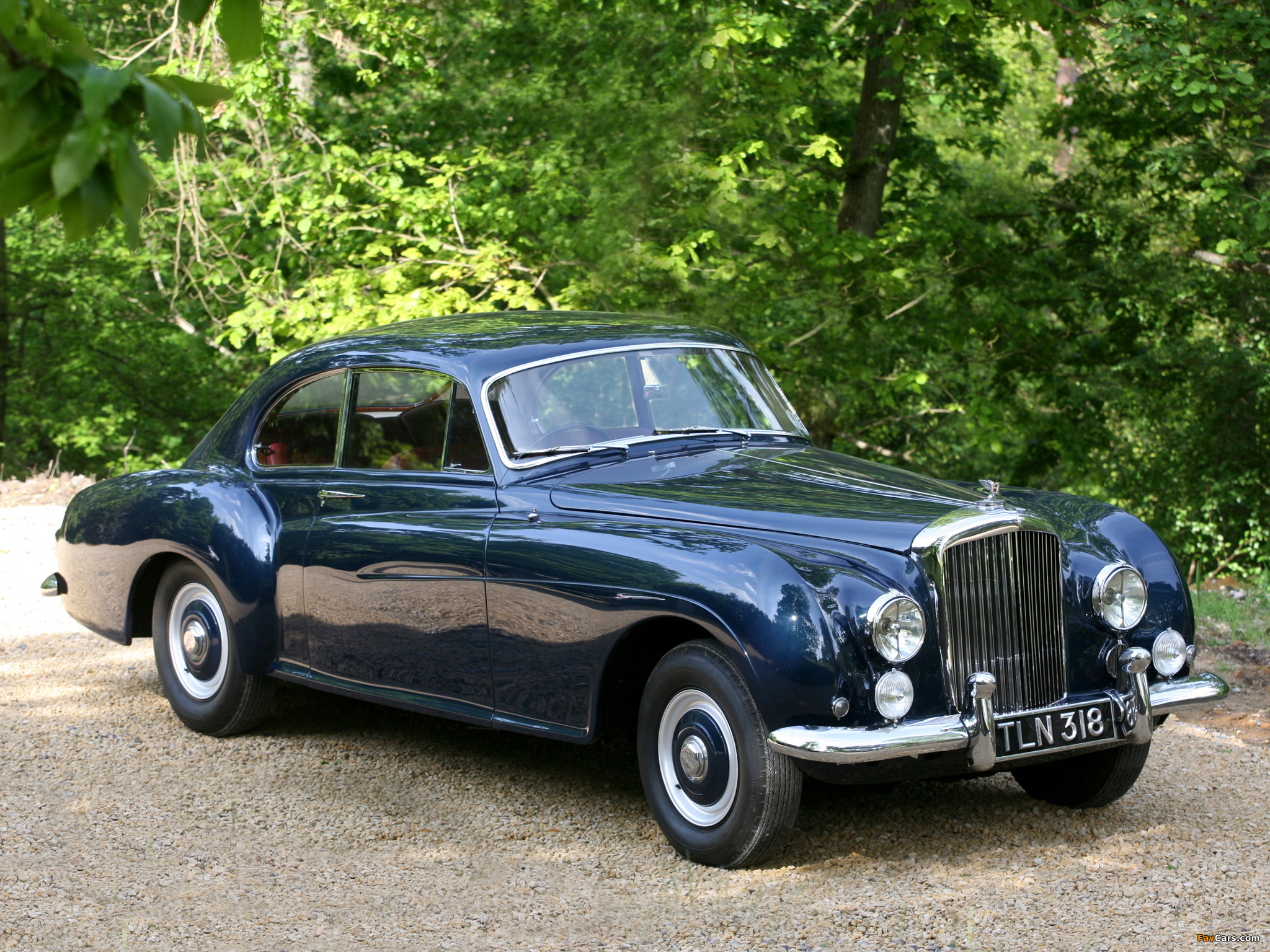Bentley R-Type Continental Sports Saloon by Mulliner 1952–55 photos ...