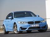 BMW M3 ZA-spec (F80) 2014 pictures