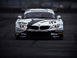 BMW Z4 GT3 (E89) 2010 photos