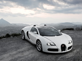 Wallpapers of Bugatti Veyron Grand Sport Roadster 2008