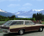 Buick Estate Wagon 1971 wallpapers