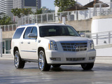 Cadillac Escalade ESV Platinum Edition 2008 pictures