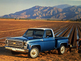 Wallpapers of Chevrolet C10 Cheyenne Stepside 1977