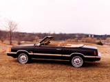 Images of Dodge Aries Convertible by Con-Tec 1981–82