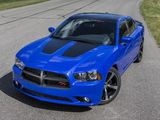 Dodge Charger R/T Daytona 2013 images