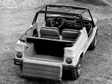 Images of Fiat 127 Village Concept 1974