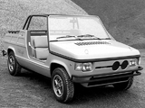 Photos of Fiat 127 Village Concept 1974