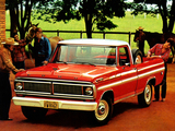 Ford F-100 BR-spec 1979 photos