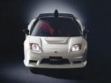 Honda NSX-R GT (NA2) 2005 photos