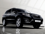 Pictures of Hyundai Santa Fe (CM) 2009