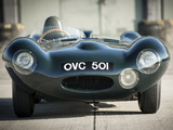 Images of Jaguar D-Type 1954