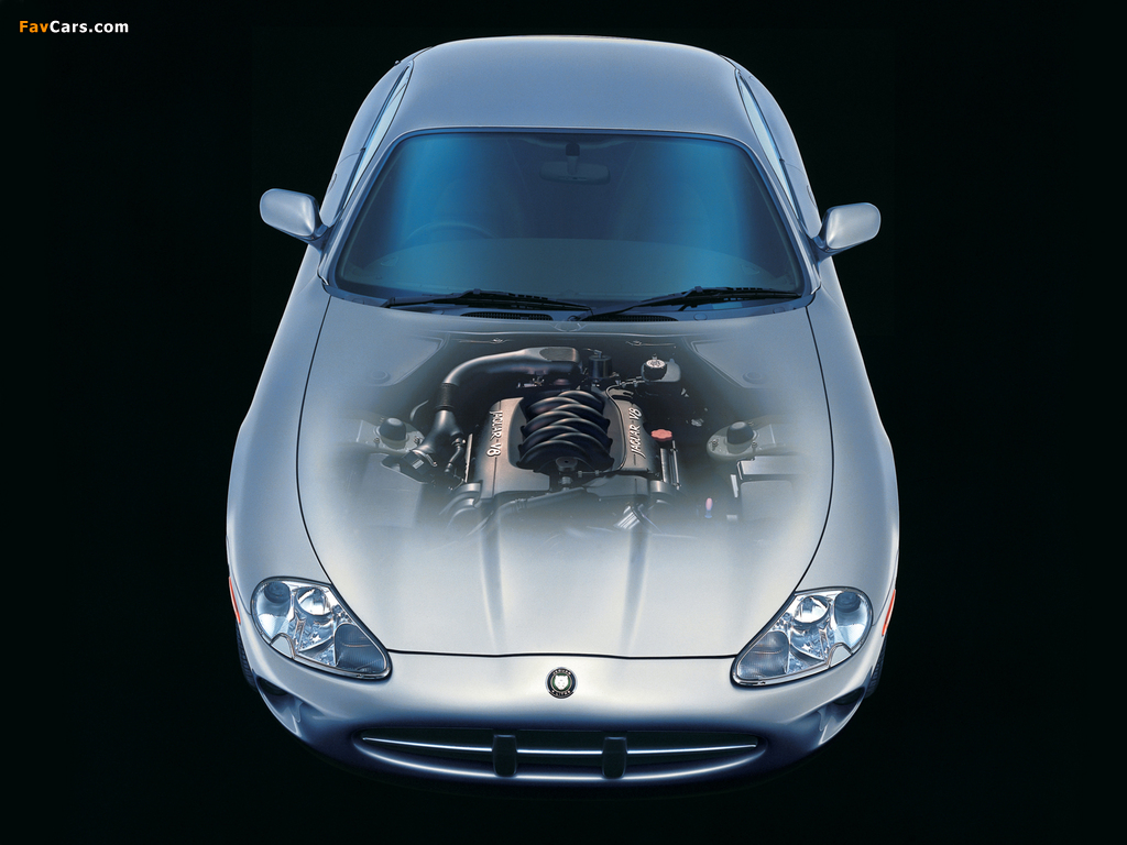 Jaguar XK8 Coupe 1996–2002 pictures (1024 x 768)