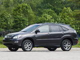 Pictures of Lexus RX 350 Pebble Beach Edition 2008