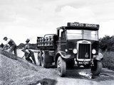 Wallpapers of Leyland Hippo TSW3 1934–44