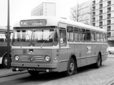 Leyland Royal Tiger Cub 1960–68 images