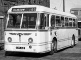 Photos of Leyland Royal Tiger PSU1/13 1950–55