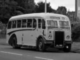 Leyland Tiger PS2 1947–49 wallpapers