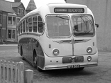 Leyland Tiger Cub PSUC1-2 (C41F) 1958–61 pictures