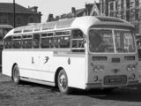 Leyland Tiger Cub PSUC1-2 (C38F) 1961– images