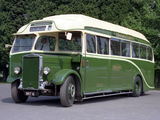 Photos of Leyland Tiger TS7 1935–