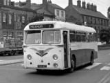 Photos of Leyland Tiger Cub PSUC1-1 (DP41F) 1958–61