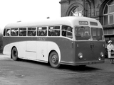 Leyland Tiger Cub PSUC1-1 (B44F) 1954–58 wallpapers