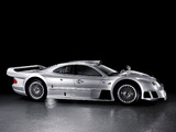 Photos of Mercedes-Benz CLK GTR AMG Road Version 1999