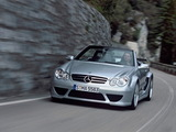Images of Mercedes-Benz CLK AMG DTM Cabrio (A209) 2006
