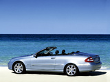 Photos of Mercedes-Benz CLK 240 Cabrio (A209) 2003–05