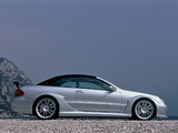 Pictures of Mercedes-Benz CLK AMG DTM Cabrio (A209) 2006