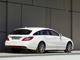 Pictures of Mercedes-Benz CLS 250 CDI Shooting Brake (X218) 2012