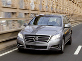 Mercedes-Benz R 500 4MATIC (W251) 2010 photos