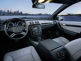 Mercedes-Benz R 350 BlueTec (W251) 2010 photos
