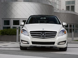 Photos of Mercedes-Benz R 350 BlueTec US-spec (W251) 2010