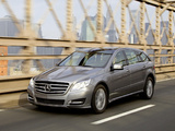 Photos of Mercedes-Benz R 500 4MATIC (W251) 2010