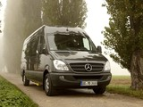 Images of Mercedes-Benz Sprinter Transfer 34 (W906) 2006–13