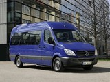 Mercedes-Benz Sprinter Transfer 34 (W906) 2006–13 photos