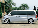 WALD Mercedes-Benz V 230 (W638/2) 1996–2003 photos